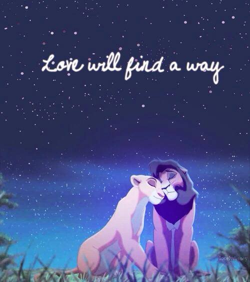 Lion King Love Quotes Cool Lion King Love Quotes Animalcarecollege