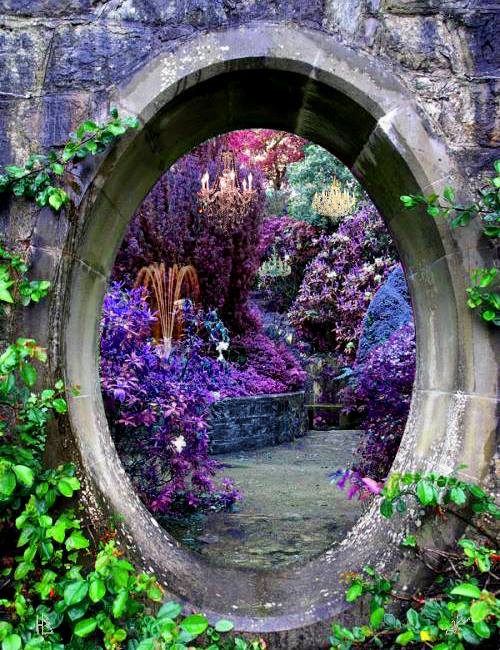 fantasy, flowers, garden and green