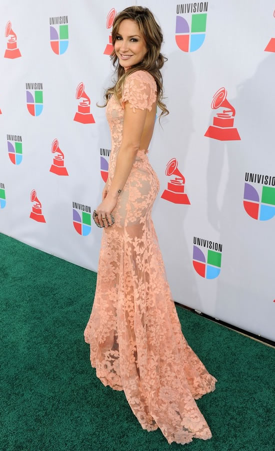 brazillian, dress, long dress, pink, rose, singer, claudia ...