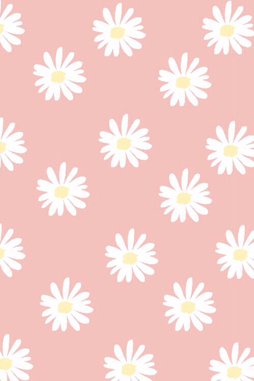 cute daisies | via Tumblr - image #2112997 by saaabrina on ...