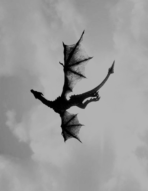 black and white, dragon, fly, free, sky