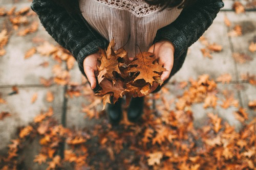 autumn, fall, outfit