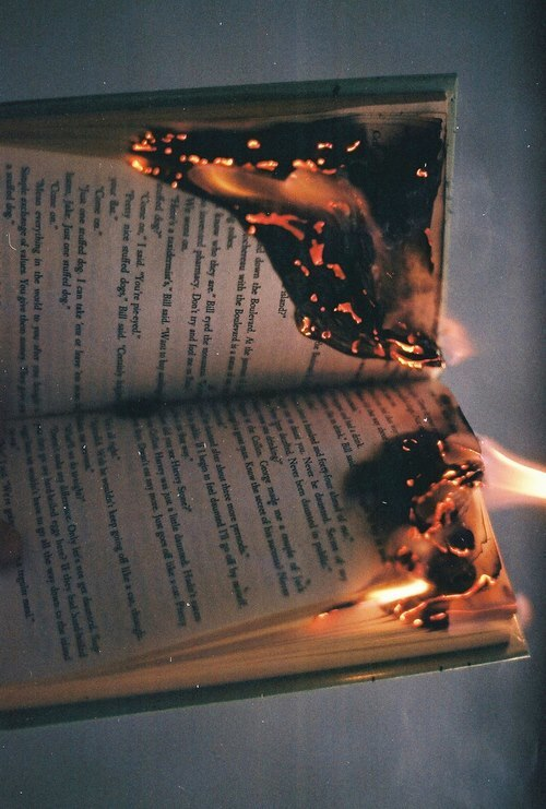 background, beautiful, book, burn, crackle, cringe, fire ...