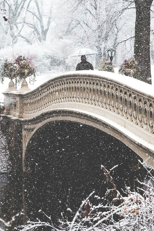 beautiful, bridge, christmas, cold, december, frozen, ice, nature, park, perfect, snow, together, walking, water, winter