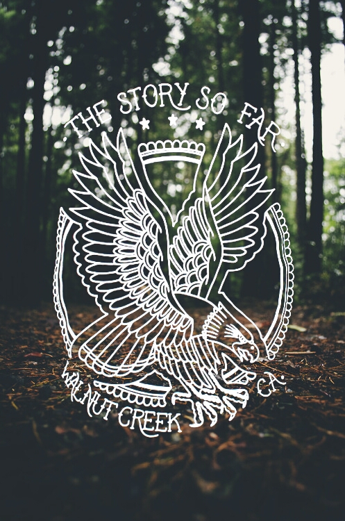drawing, eagle, the story so far