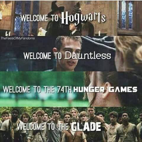 74th hunger games, books, dauntless, divergent, glade, harry potter, hogwarts, the hunger games, maze runner