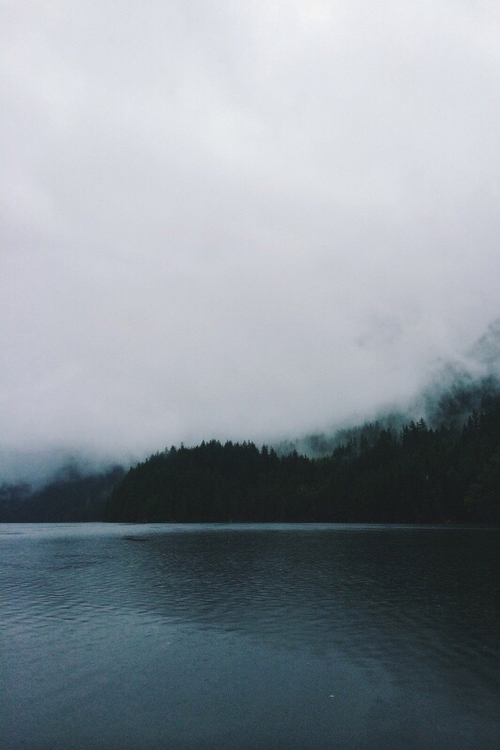alone, beautiful, clouds, cloudy, dark, darkness, fog, foggy, forest, inspiration, lake, landscape, loneliness, lonely, lost, mist, misty, nature, photography, place, trees, woods, whisper of silence, shadow of silence, photographie