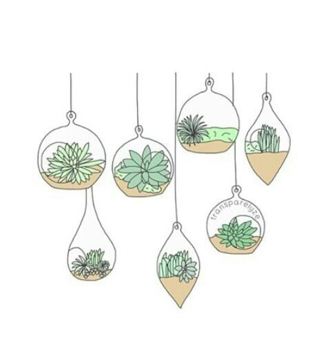 Drawing Not Mine Plant Plants Png Image 3604535 By KSENIAL On