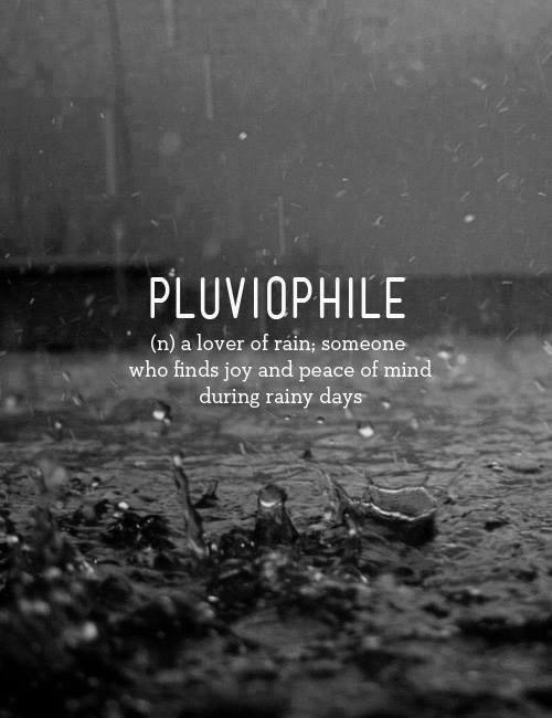 leaves, lonely, mood, photography, rain, sadness, wet, winter, pluviophile, melanchonic