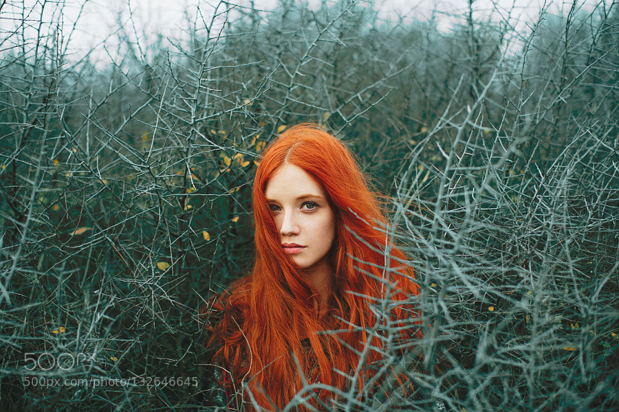 fairy, forest, ginger, girl, photography, portrait, red hair, redhead