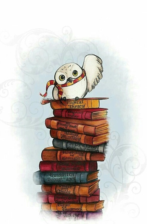 books, harry potter, hedwig, magical, owl, wallpaper, white
