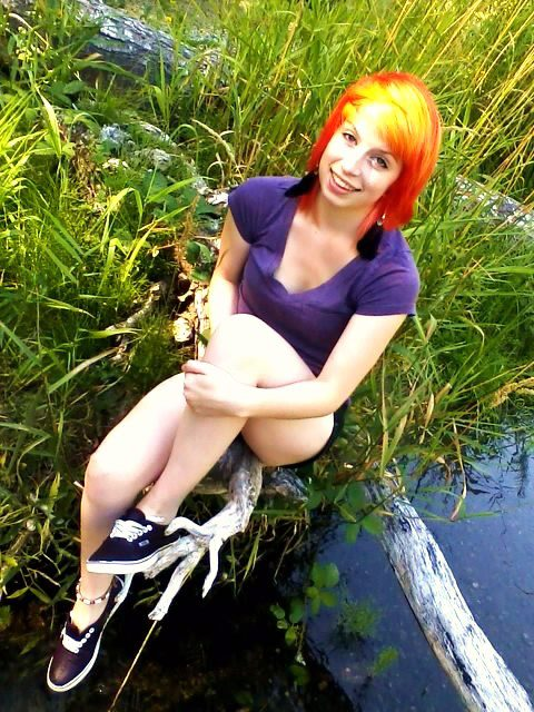 cute, feathers, nature, orange, river, yellow
