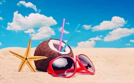 august, beach, coconut, glass, sun