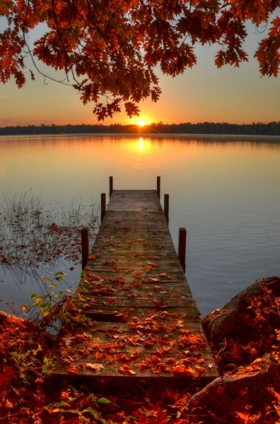 autumn, fall, pier, lake, water