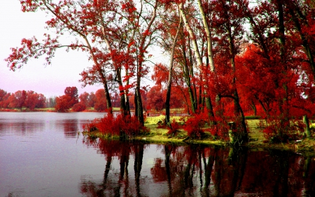 autumn, river, riverbank, trees
