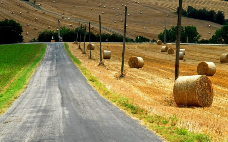 barn, field, nature, road