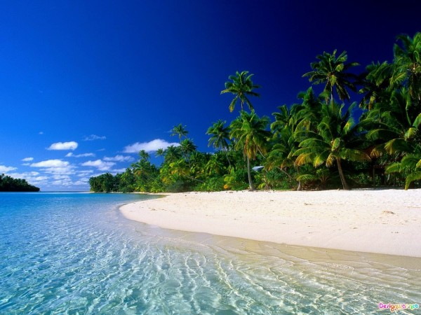 beautiful, tropical, beach, photos