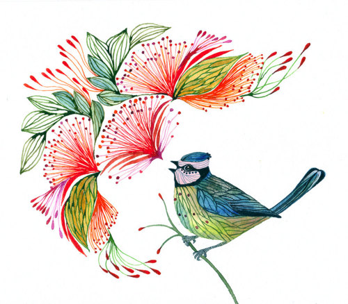 art, bird, colourful, painting, pencil art, songs