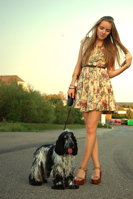 blog, cute, dog, dress, fashion, style, vintage