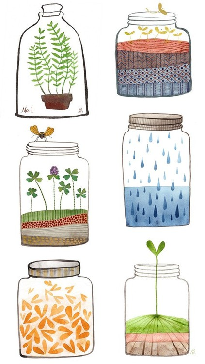 bottle, bottles, plants, seasons, spring