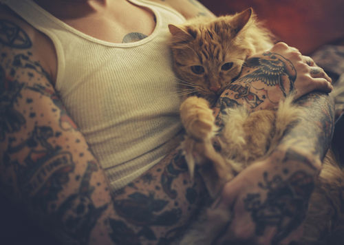 boy, cat, tattoo, undershirt, sexy
