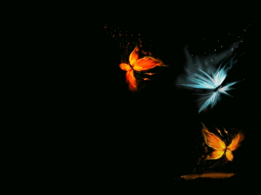 butterfly, black, abstract