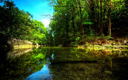 calm, forest, nature, river