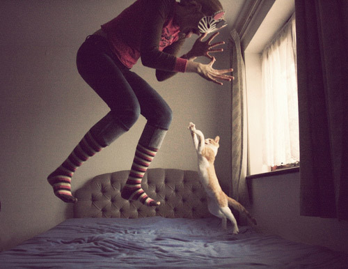 cat, girl, photography, fun, nice