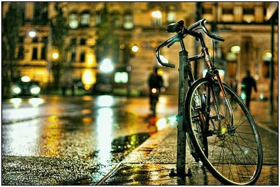 city, street, rain, bycicle