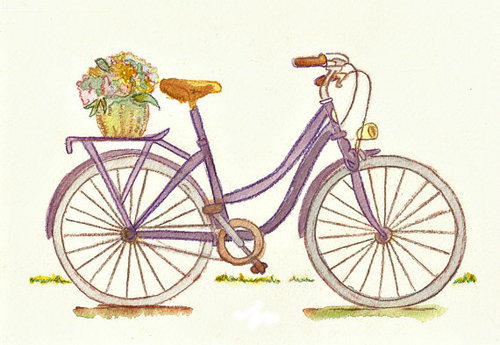 cycle, bicycle, basket, flower, memories