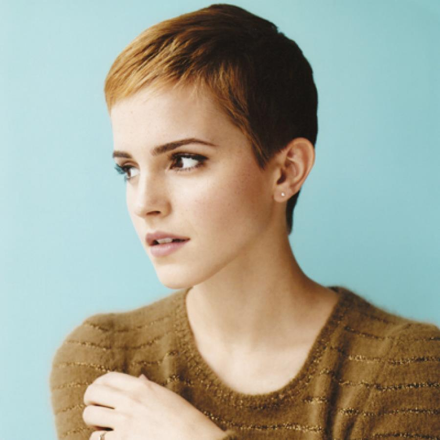 emma watson, nice, harry potter