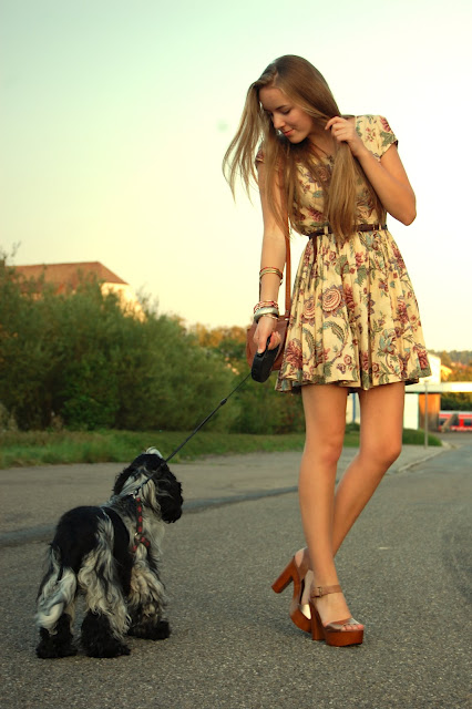 fashion, style, blog, shoes, dog