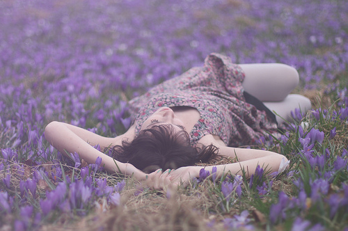 field, floral, girl, photography, purple