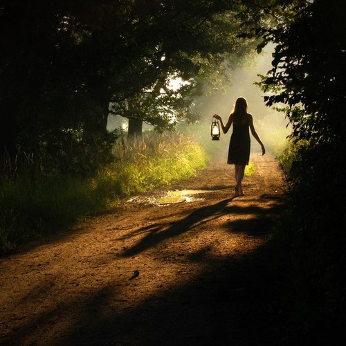 forest, pathj, girl, lantern, photography
