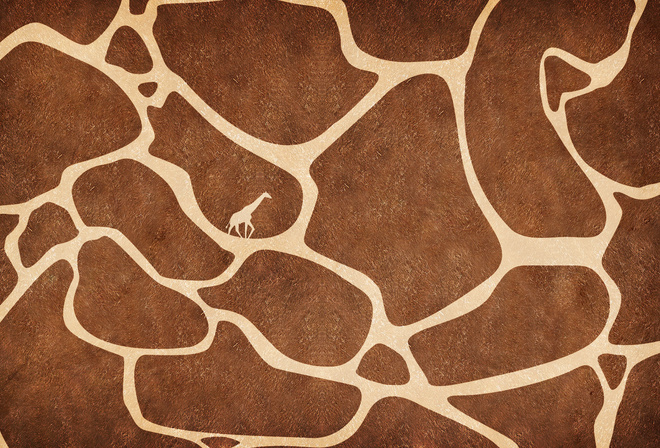 giraffe, texture, skin