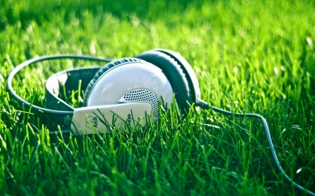 grass, headphones, music, outdoors, photography