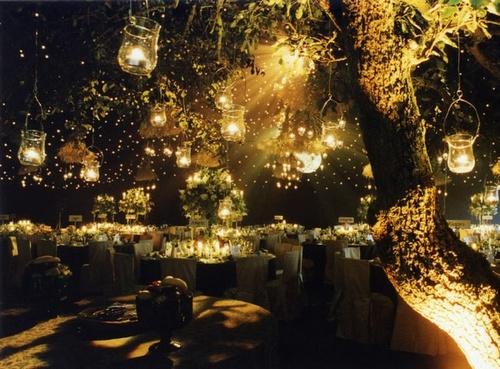 green, party, decor, nature, lights