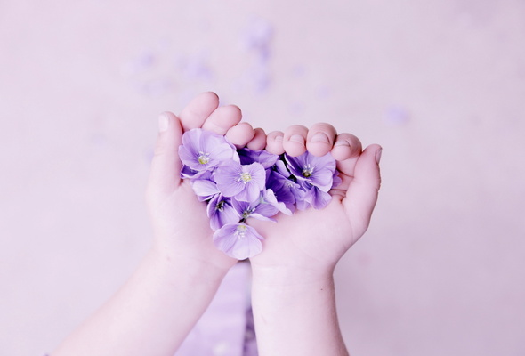 hands, flowers, background