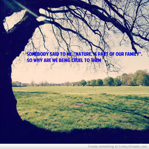 Inspirational Quotes About Life And Nature: Original Size Of Image #555961
