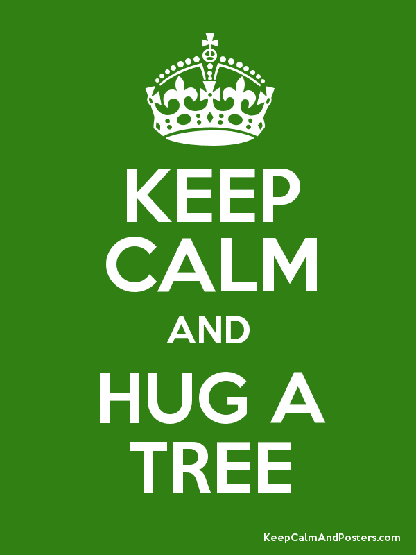 hug, hug a tree, keep calm, tree