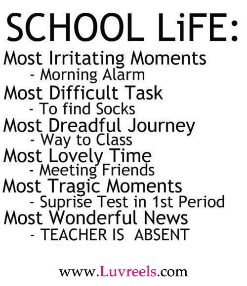 Funny Quotes About School: Love, Quotes, Text, Life, School