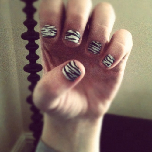 nails, zebra