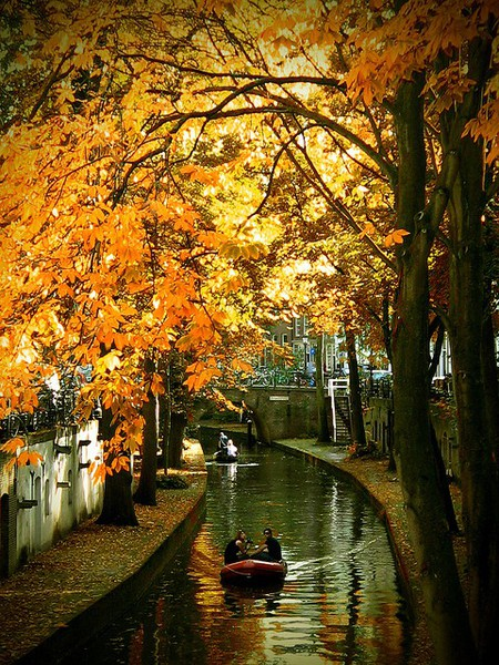 netherlands, utrecht, autumn, river