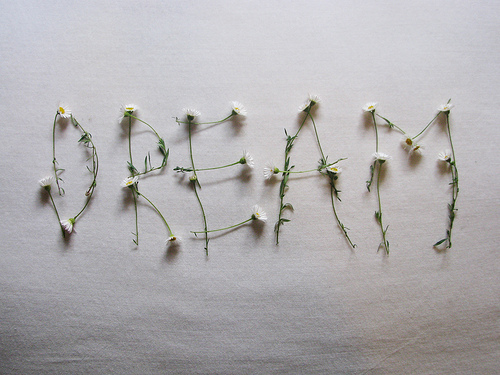 nice, cute, dream, flowers