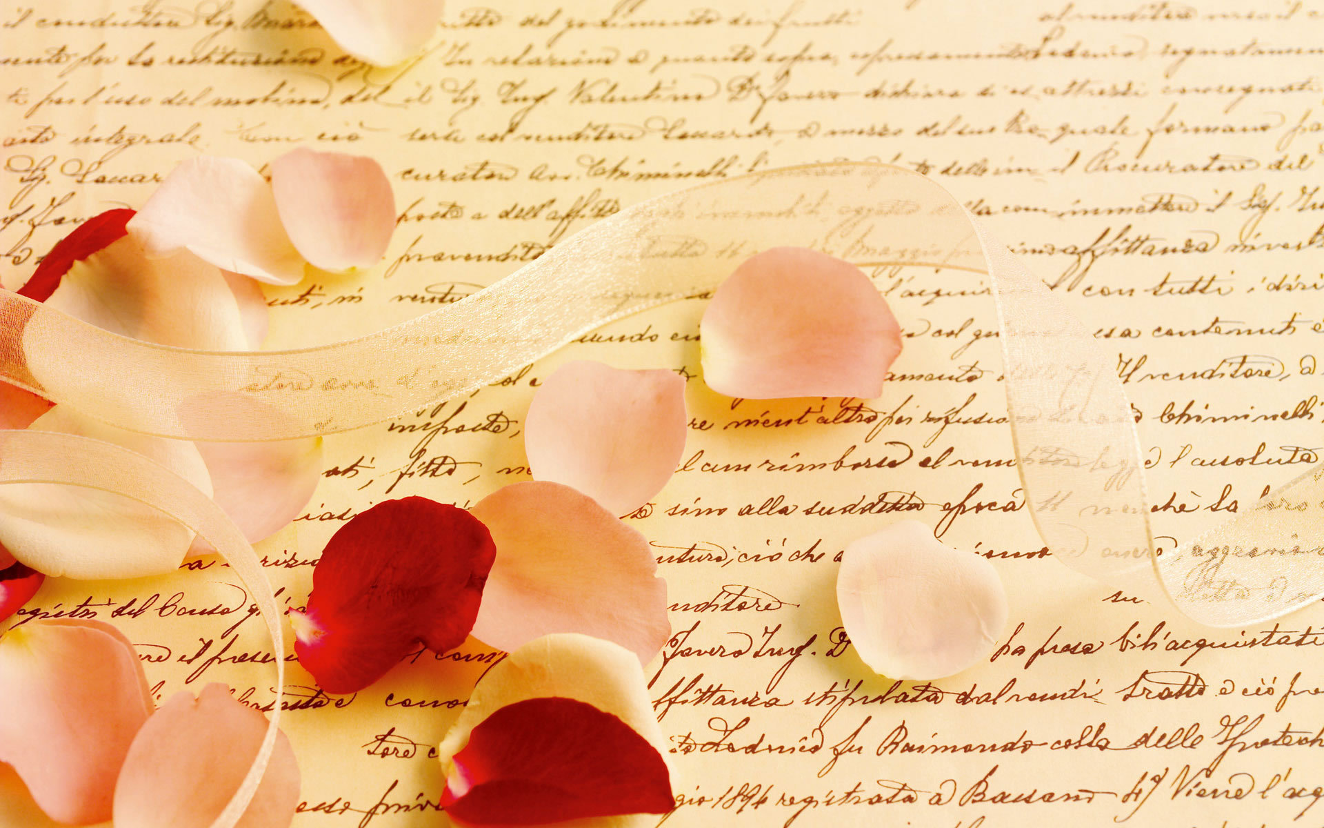 parchment, letter by letter, petals