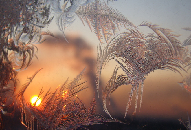 patterns, frost, window