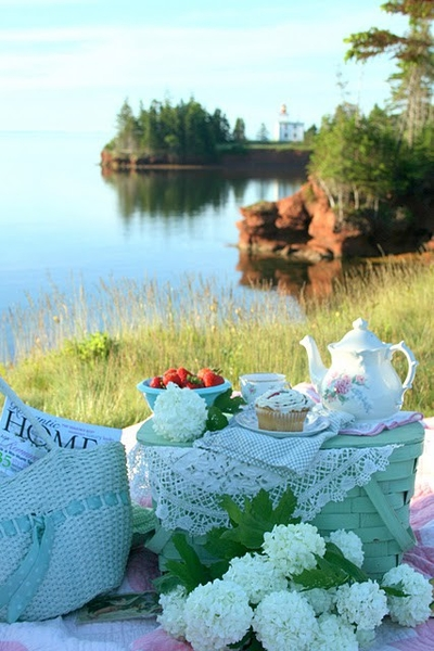 picnic, lake, country