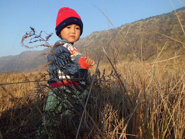 princess of savanah bromo, photograph, light, cute