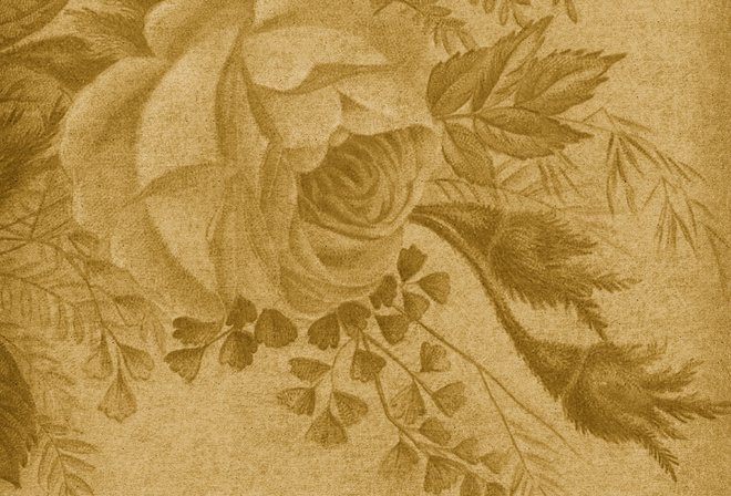 rose, texture, vintage