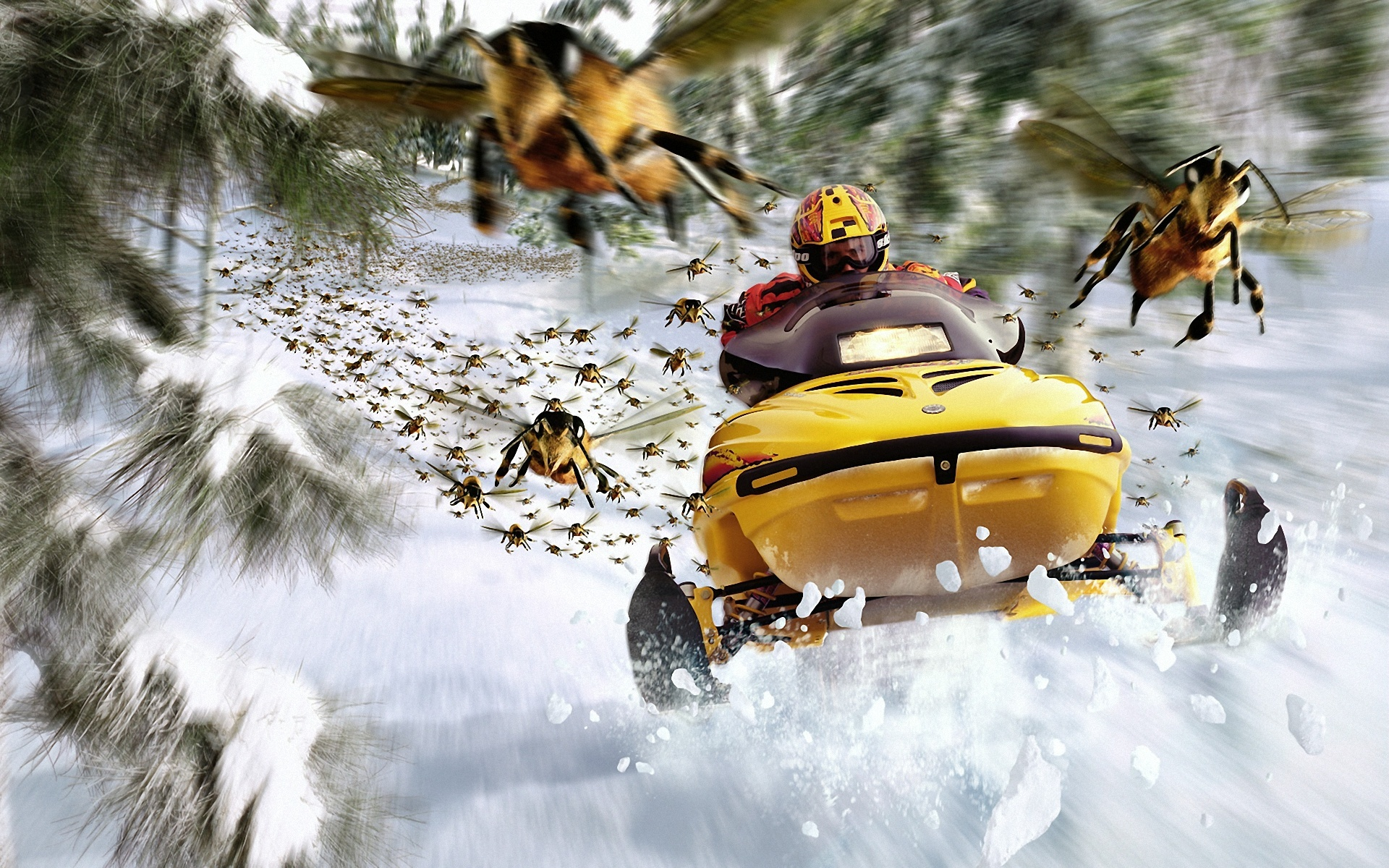snowmobile, speed, winter